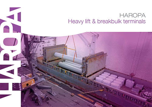 Heavy lift and breabulk terminals